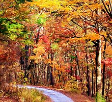 The Forest Path by Darlene Lankford Honeycutt