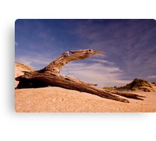I want to fly!!!!! Canvas Print