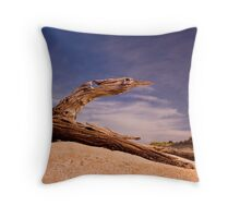 I want to fly!!!!! Throw Pillow