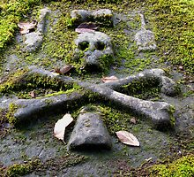Grave Stone by jacqi