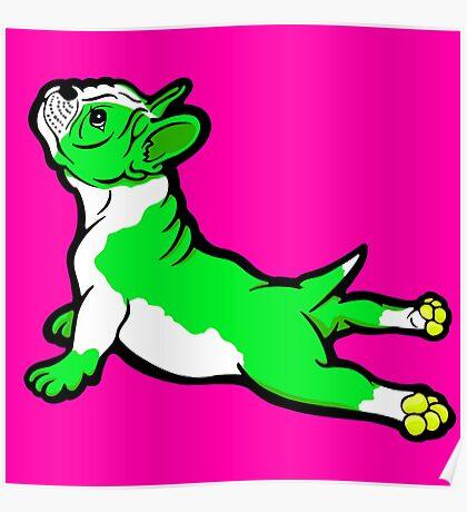 Boston Bull Terrier Puppy Green  Poster