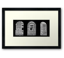 The city of St. Louis Framed Print