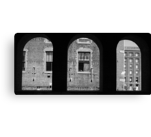 The city of St. Louis Canvas Print