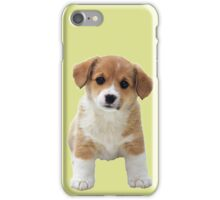 A Little Puppy iPhone Case/Skin