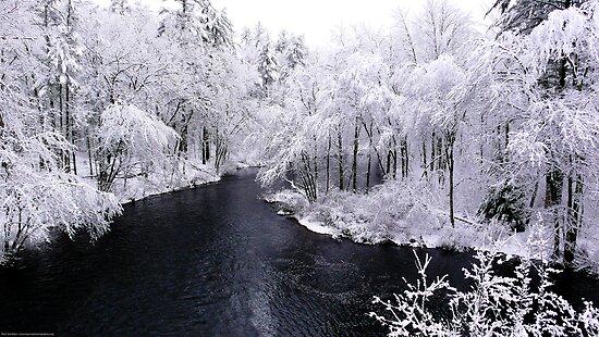 """New England Snowfall"" by Richard VanWart"