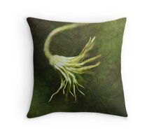 """Every artist dips his brush in his own soul, and paints his own nature into his pictures."" Throw Pillow"