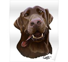 Chocolate Lab Caricature Poster