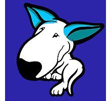 Aqua Ears English Bull Terrier Puppy Photographic Print