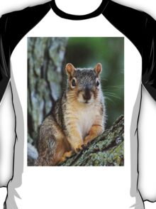 Squirrel Senior Photo T-Shirt