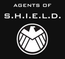 Agents of S.H.I.E.L.D. Level 6 by prunstedler