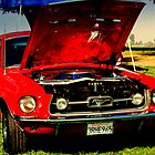 MUSTANG SALLY! by davesdigis