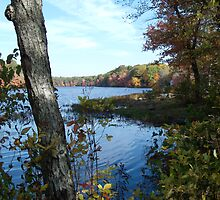 Autumn in Rhode Island | Barbers Pond by Jack McCabe