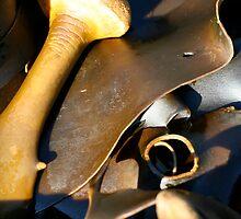 ocean art #62, kelp by stickelsimages
