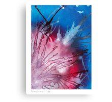 calme explosif #2 Canvas Print