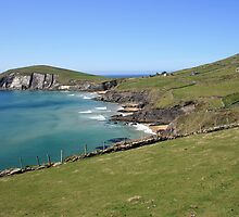 Slea Head coastline by John Quinn