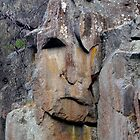 Rock Face by Elana Bailey