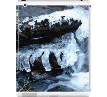 Cold Lips iPad Case/Skin