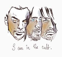 i am in the cult by olgapanteleyeva