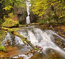 Catrigg Force by Stewart Laker