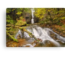 Catrigg Force Canvas Print