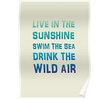 Live in the sunshine summer poster Poster
