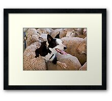 At work, rest and play Framed Print