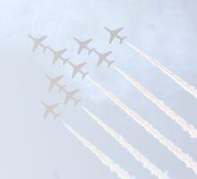 Team in Flight by Vanessa Combes