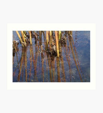 vertical reflections Art Print