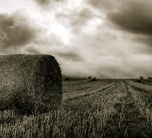 Bailing the Hay by Evan Shortiss