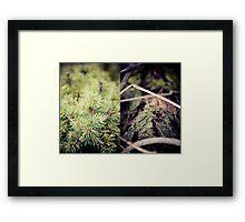 diptych #2 Framed Print