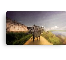 The Hard Road Canvas Print