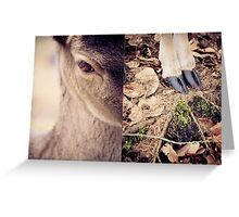 diptych #3 Greeting Card