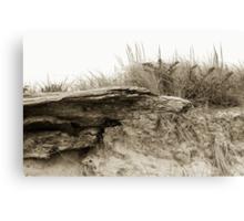 Jettis Driftwood Canvas Print