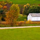 Country Barn by Jeff Lowe