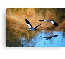 MIRROR REFLECTION OF THE EGYPTION GEESE Canvas Print