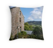 Want This View? Throw Pillow