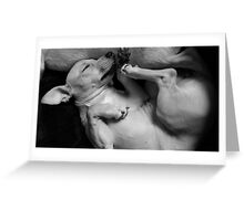 BEST PUPPY PILLOW EVER Greeting Card
