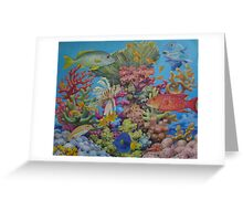 Red Sea Reef Greeting Card