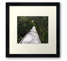 Four Mile Cove Ecological Preserve Framed Print