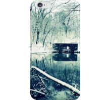 paradise springs iPhone Case/Skin
