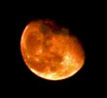 Scrunchy face moon by ♥⊱ B. Randi Bailey