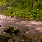 Sgwd yr Eira Downstream by antonywilliams