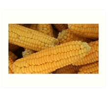 Corn On The Cob Art Print