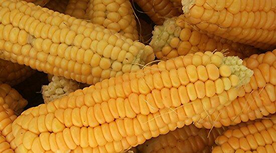Corn On The Cob by Stephen Thomas