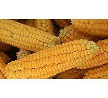 Corn On The Cob Photographic Print