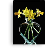 Jonquil Spring Canvas Print