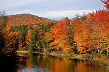 Indian Lake Fall by Jeannette Sheehy