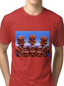 Solar Panel Discussion Tri-blend T-Shirt