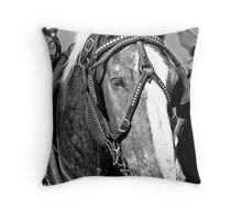 ~ No, I am Not Mr. Ed, Thank You Very Much !  ~ Throw Pillow