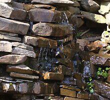 Weeping Rocks by Ilene Clayton